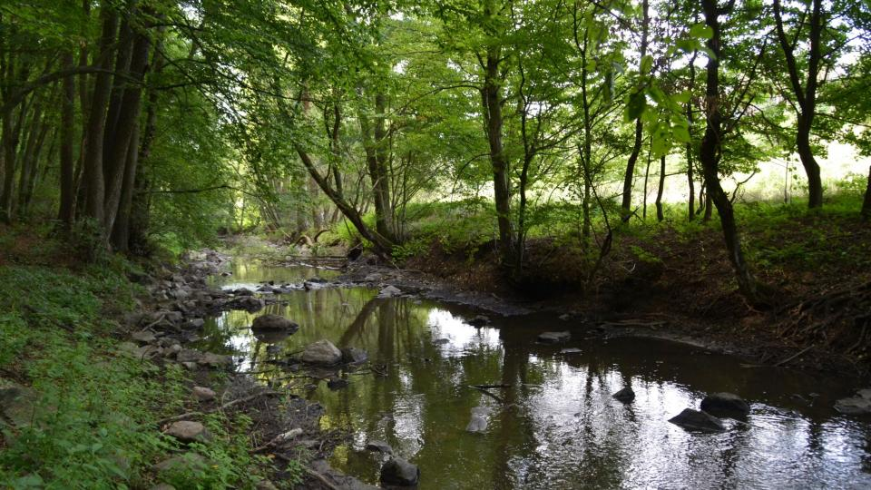 Přírodní park zaujímá necelé tři hektary