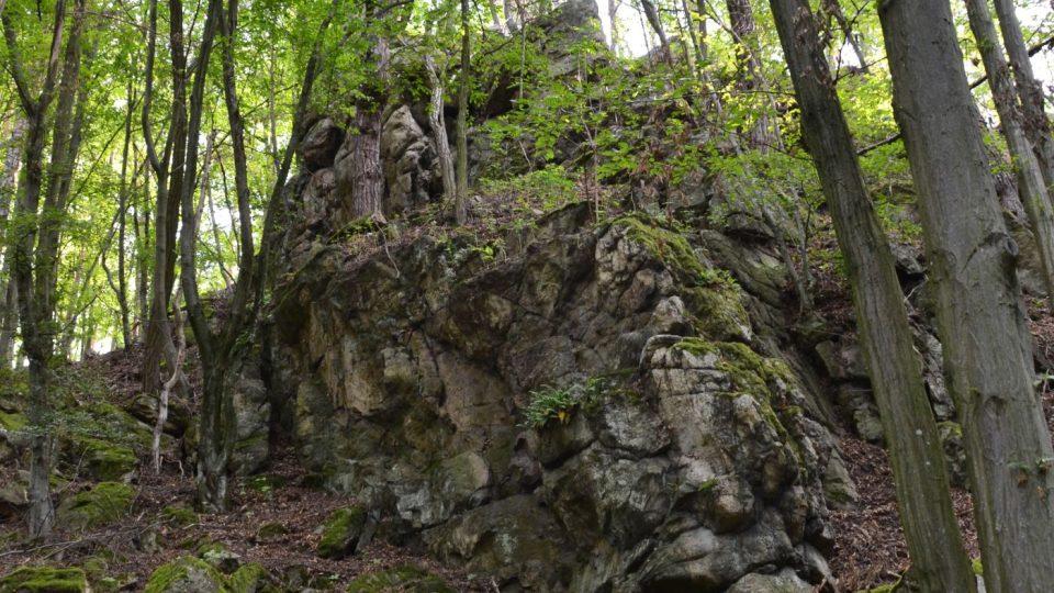 Přírodní park Rokytná vznikl na konci 70. let minulého století