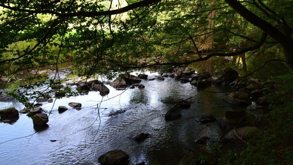 Řeku v minulosti využívali hospodáři na pohánění mlýnů