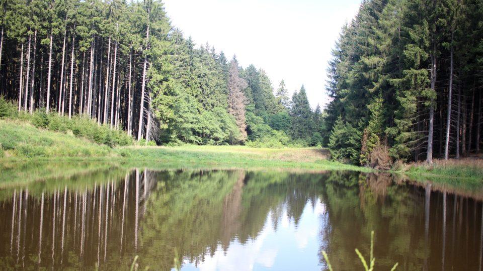 Rybníky na Kněžickém potoce, Jihlavsko