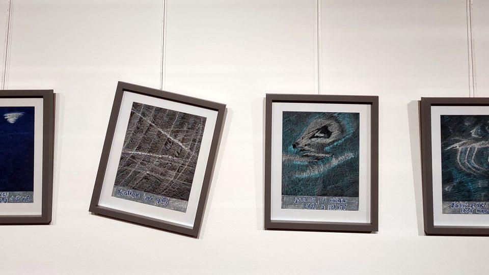 Výstava Petrkov v nás aneb pocta Bohuslavu Reynkovi, Havlíčkův Brod