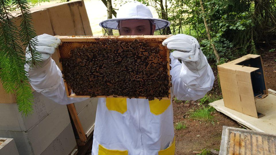 Včelařství Josefa Fišara, Žďársko