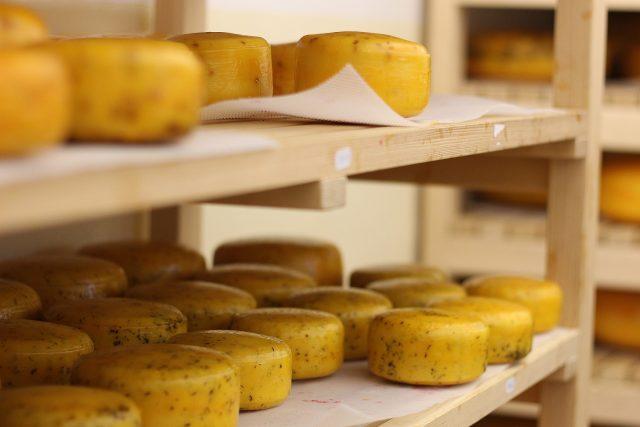 Sýr Gouda, zrání
