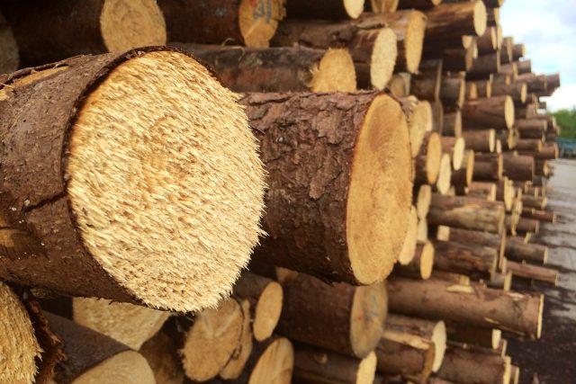 Zpracování dřeva, ilustrační foto