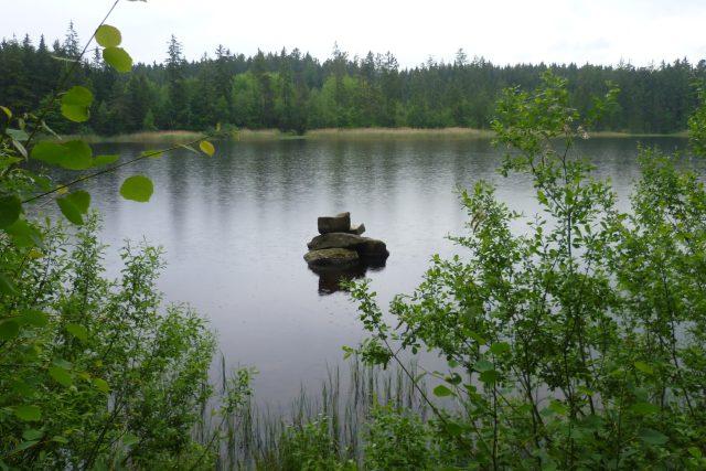 Velký Pařezitý rybník,  Řásná | foto: Irena Šarounová,  Český rozhlas