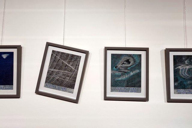 Výstava Petrkov v nás aneb pocta Bohuslavu Reynkovi,  Havlíčkův Brod | foto: Dáša Kubíková,  Český rozhlas