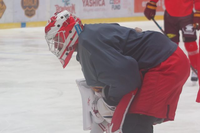 Patrik Bartošák, hokejový brankář
