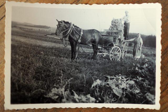 Fotografie z Veselého Žďáru,  Havlíčkobrodsko   foto: Dáša Kubíková,  Český rozhlas