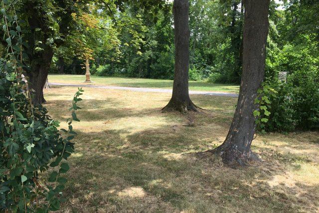 Pracovníci hradeckých technických služeb zastavili sekání trávy na území města. Důvodem není jen suché počasí, ale také tlak obyvatel