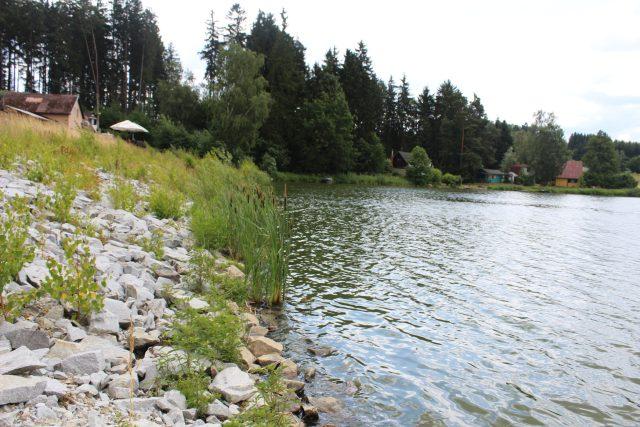 Rybník Kachlička, Vysočina