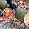 Kácení dřeva (ilustrační foto)